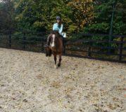 WELC_Summer_Horse-Riding-1024x768